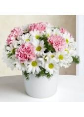 Sevgi Baharı