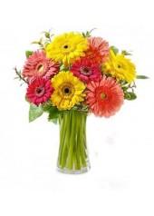 Gönlümün Çiçeğine