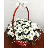 Çiçek Sepeti Arajmanı