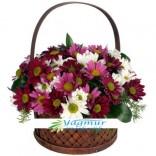Kır çiçekleri Arajmanı