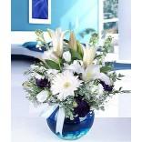 Mavi Akvaryum