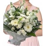 Mis Kokulu Beyaz Çiçekler