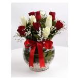 Kırmızı ve Beyaz Güller Aşk Küresi
