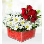 Kalpte Güller ve Papatya