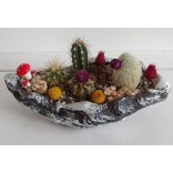Seramik Dekoratif Saksıda Bitkiler